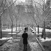 March 18, 1955, New York, NY